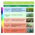 Plant Grow lights Full Spectrum LED Strip