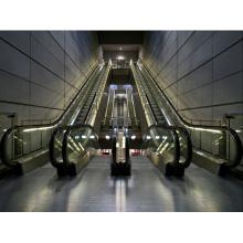 Эскалатор и конвейер и переезд Walke Ie20