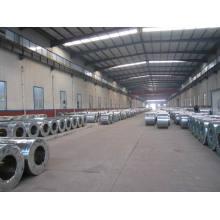 Sgch Galvanized Steel Coil Galvanized Steel
