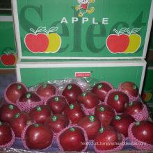 2014 Colheita Hot vendendo Huaniu Apple
