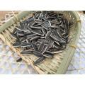 Semillas de girasol chino con cáscara