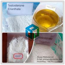 Testosterona anabólica Enanthate 315-37-7 do pó do esteróide para o ganho do músculo