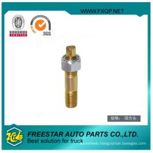 High Performance Bolt with Hex Nut