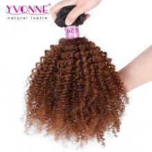 Top Quality Afro Kinky Brazilian Ombre Hair Weave