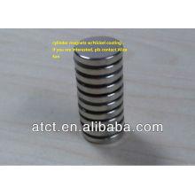 Zylinder-Magnete/Runde Magnete/seltene Erde Magneten