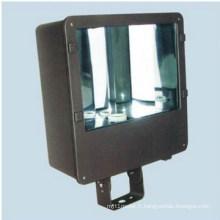 Appareil de projecteur (DS-329)