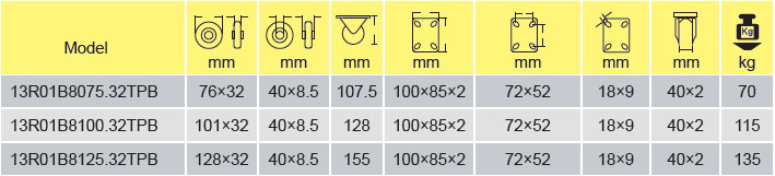 Parameters Of 13R01B8100.32TPB