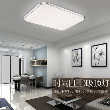 High Quality Aluminum Apple Design LED Ceiling Light