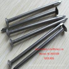 Pregos de aço EXW Iron Nails