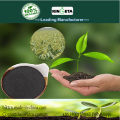 Soil conditioner organic biochar fertilizer