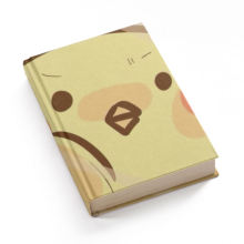 high quality languo notebook