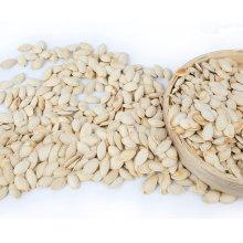 Grado AA semillas de calabaza de crecimiento natural para la venta