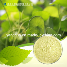 Natural Extract 98% Asiaticoside
