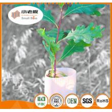 Gardes d'arbres de plantes / Protecteurs d'arbres