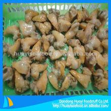 frozen whelk meat(Buccinum Undatum)