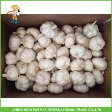 Atacado Chinesa Puro Branco & Branca de Neve & Normal Alho Branco & Vermelho 4.5CM, 5.0CM, 5.5CM, 6.0CM, saco de malha em 10Kg Carton