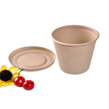 Biodegradable Sugarcane Pulp Cup