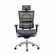 2018 executive aluminum chair with neck and back support