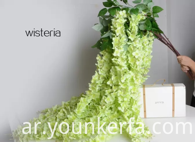 Wisteria Green Png