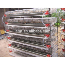 high quality quail breeding cages with automatic drinking and feeding system