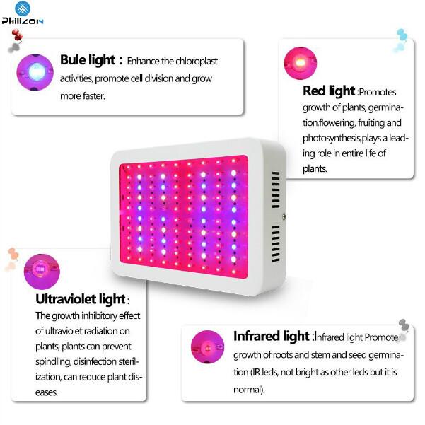 Indoor LED Grow light