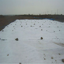 High Quality Polypropylene Fiber Geotextile for Ground Cover