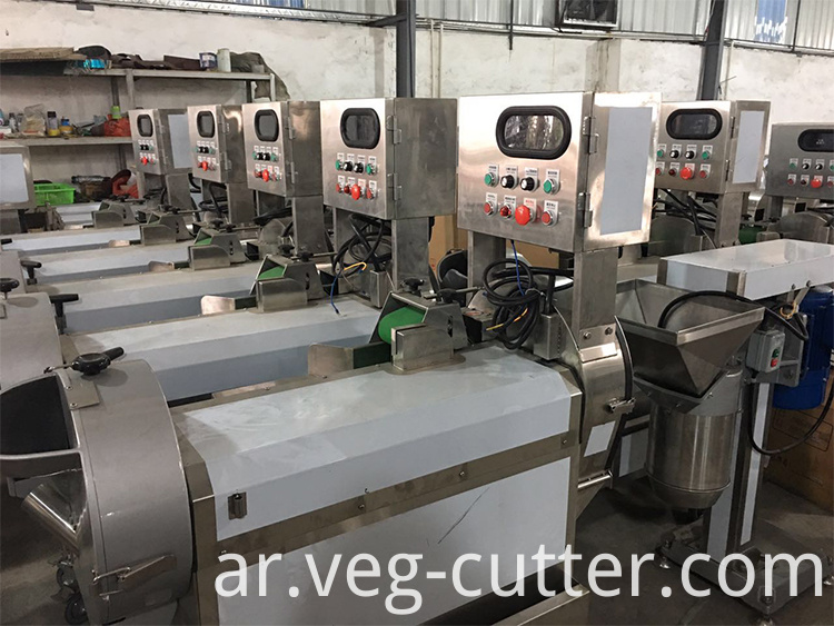 Fruits Grater Machine