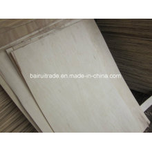 1270X840/640mm Birch Core Veneer Birch for Plywood