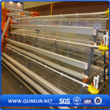 Safety and Low Price Chicken Cage