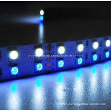 SMD 5060 + 1210 RGB + W Tira flexible-120 LED / M 3000k