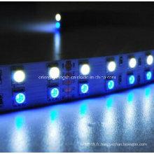 SMD 5060+1210 RGB+W Flexible Strip-120 LEDs/M 2700k LED Light
