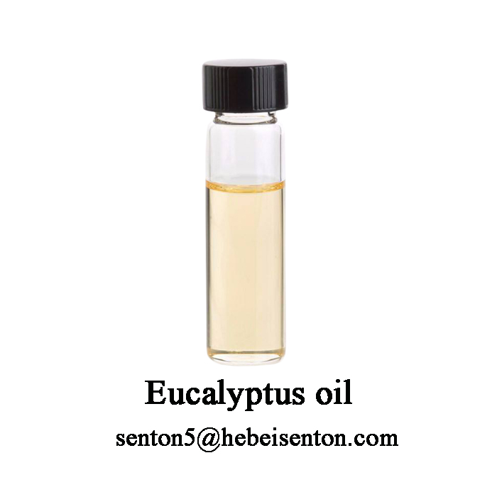 Distilled Oil from Leaf of Eucalyptus