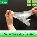 Food Processing Disposable PE Plastic Glove