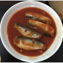 Makrelenfisch in Chili-Tomate Bunte OEM-Dose