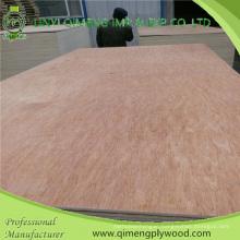 Poplar Core 12mm Bintangor Plywood From Linyi Qimeng