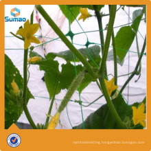 New design hdpe anti insect netting for wholesales