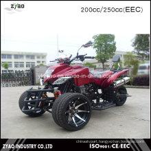 Japanese Quad Bike Sport ATV 250cc EEC