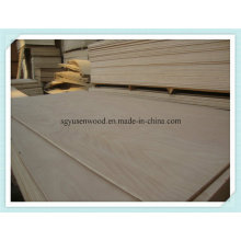 Poplar Plywood Panel for Furniture Use
