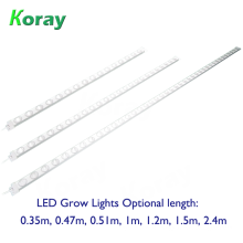 Waterproof LED Grow Light Plant factory shelves planted