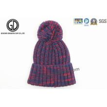 Bonnet Beanie tricoté en hiver à l'hiver 2016 avec un nouveau design