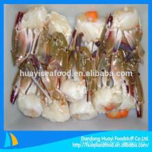Promoção tamanho diferente de congelados meio cortar azul natação caranguejo com preço baixo
