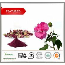 Anthocyanins 100% Pure Nature 5% -25% Flor de hibisco PE / Hibiscus PE