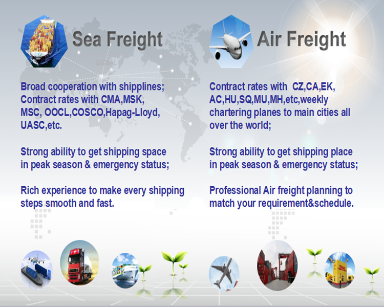 Air Freight/Ocean Freight/ Railway Freight From China to Russia