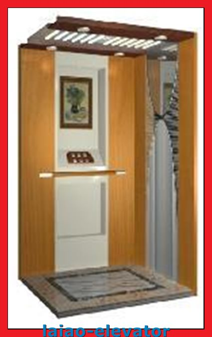 Machine Roomless Traction Home Lift with Monarch Inverter Control Board