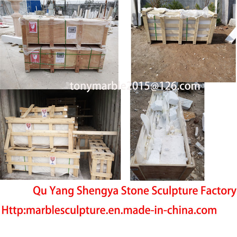 Beige Stone Sculpture Marble Tables (SY-T001)