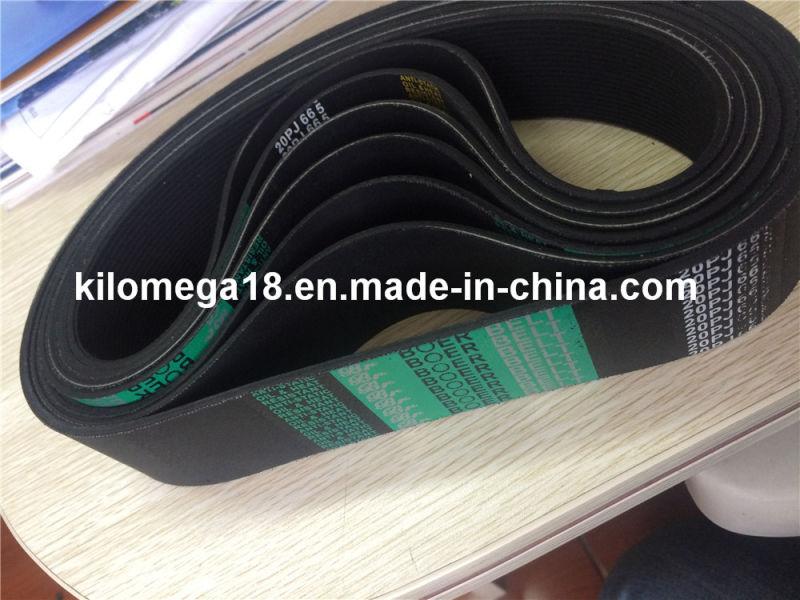 Pk Pj Ribbed Belt with Hot Sale 20pj665