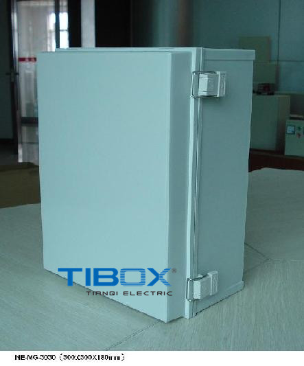 Plastic Box with Plastic Latch and Hinge Type