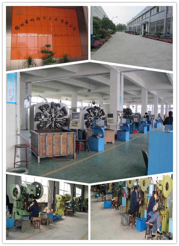 Slth-Ws-00 Stainless Steel Wave Spring for Industry