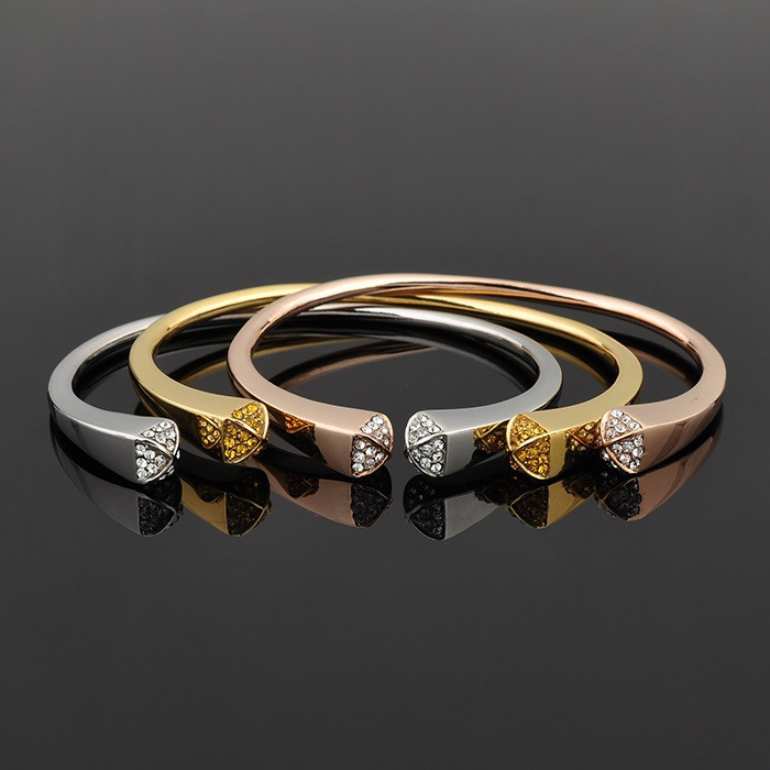 Crystal Jewelry Fashion Jewelry Stainless Steel Bangle (BR381)