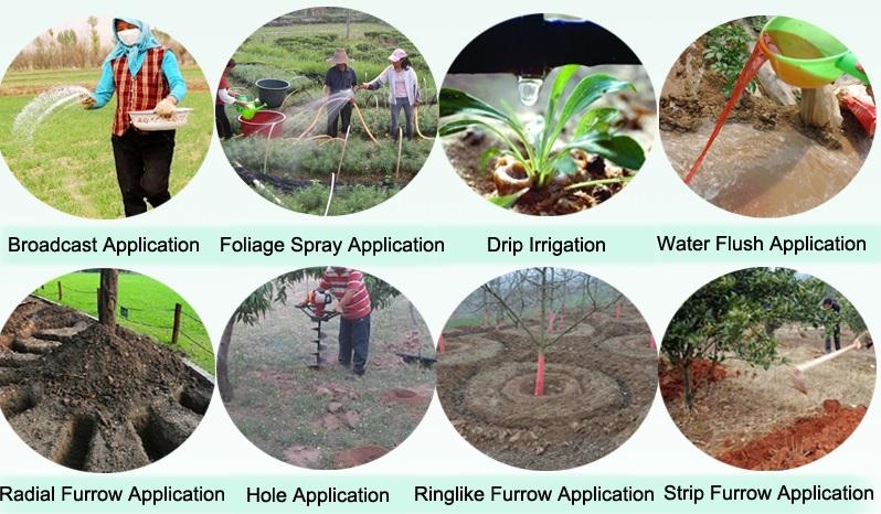 High Quality Granular Compound NPK 16-16-8 20-20-15 Fertilizer